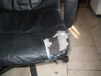 The Dog Ate My Chair