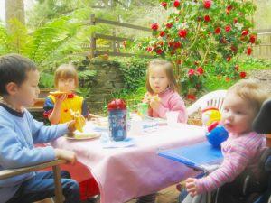kids picnic party